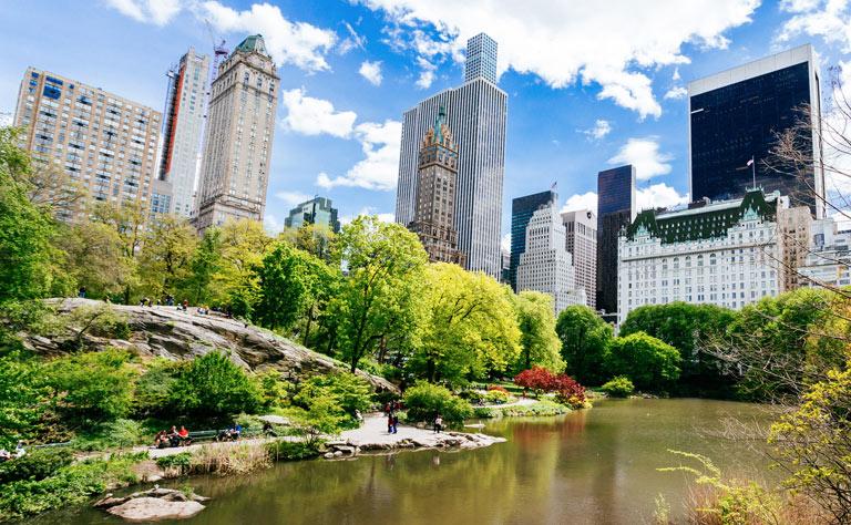Central Park New York Tour